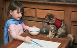 Bộ ảnh về tình bạn thân thiết của cô bé tự kỷ với chú mèo cưng