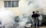 Malaysia xem xét khả năng cho phá thai đối với bà mẹ nhiễm Zika