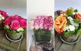 3 cách cắm hoa hồng đơn giản nhưng đẹp mắt bạn phải thử ngay!