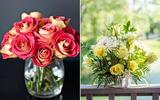 2 cách cắm hoa hồng đơn giản trang trí nhà đẹp tinh tế