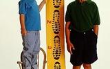 Sự phát triển chiều cao của trẻ từ 0 đến 6 tuổi
