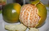 4 phần bỏ đi của thực phẩm có tác dụng ngăn ngừa ung thư