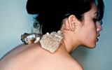 Những bí ẩn về đau lưng được các nhà khoa học vạch trần