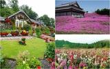3 khu vườn tuyệt đẹp người chồng tự tay tạo dựng và chăm sóc để tặng vợ
