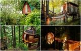 7 mẫu thiết kế nhà trên cây giúp bạn như được quay về giấc mơ thời thơ ấu