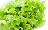 5 lợi ích tuyệt vời cho sức khỏe từ rau diếp