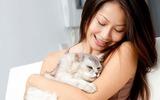 3 bệnh phổ biến bạn có thể lây từ thú cưng trong nhà
