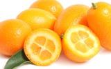 6 loại thực phẩm giúp tăng cường khả năng sinh sản
