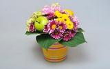 Hướng dẫn cắm hoa xen quả đầy sinh động