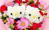 Cắm hoa hình mèo Kitty dễ thương!