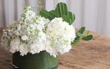 Cắm hoa đẹp trang trí nhà cho mùa hè thật mát