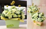 Trang trí nhà với cách cắm hoa cẩm chướng trang nhã