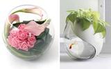 6 cách cắm hoa đẹp trong bình cá tròn
