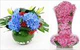 5 cách cắm hoa cẩm tú cầu tuyệt đẹp và sáng tạo