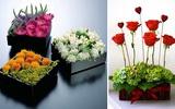 5 cách cắm hoa thật trẻ trung và đầy ấn tượng