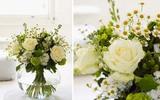 Cách cắm hoa sắc trắng và xanh đẹp dịu dàng tinh tế