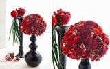 Cắm hoa sắc đỏ tưng bừng mừng Tết độc lập