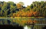 Tuyệt đẹp những điểm du lịch tại Đồng Nai