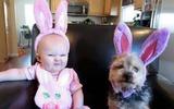 Những bức ảnh cực yêu cho thấy mọi em bé nên có một bạn thú cưng