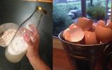 Cứ bỏ vỏ trứng vào chai rồi lắc mạnh vào, bạn sẽ tròn mắt khi thấy kết quả