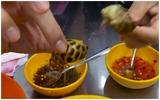 Ốc, bánh tráng trộn Sài Gòn được khen hết lời trên truyền hình Mỹ