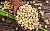 Thực phẩm có lợi và hại cho người mắc bệnh tuyến giáp