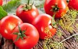 Lợi ích tuyệt vời của cà chua trong việc bảo vệ, phòng ngừa ung thư da