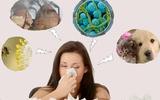 Viêm mũi dị ứng giao mùa: Bệnh không nguy hiểm nhưng khó chữa khỏi