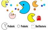 4  tiêu chí lựa chọn men vi sinh khi trẻ bị rối loạn tiêu hóa