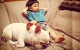 Tình bạn ngọt lịm tim của nhóc tì đầu nấm và cún cưng làm dân mạng điên đảo