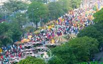 Người Sài Gòn nô nức tham quan đường hoa, hội hoa rực rỡ màu sắc