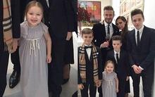 """Harper trông như """"bà cụ non"""" trong lễ kỷ niệm ngày cưới của bố mẹ"""