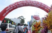 Người dân Sài Gòn nô nức đi xem thông cầu bắc qua sông Nhiêu Lộc Thị Nghè