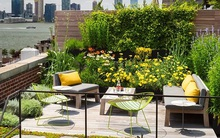 9 khu vườn trên sân thượng vừa đẹp, vừa dễ làm, rất hợp với nhà nhỏ