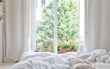 Có những phòng ngủ màu trắng đơn giản mà đẹp thu hút ánh nhìn