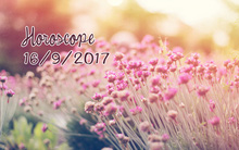 Thứ Bảy của bạn (16/9): Cự Giải gặt hái thành công