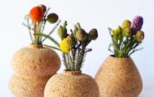 Mang thiên nhiên về nhà với những món đồ làm từ gỗ bần
