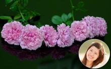 Người phụ nữ Hà Thành dành 8 năm cho niềm đam mê biến sân thượng thành góc vườn hoa rực rỡ