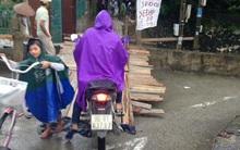 Hà Nam: Ngập lụt, người dân dùng gỗ làm cầu để thu tiền người qua lại