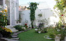 Ngôi nhà vườn rộng 200m² nhìn đâu cũng thấy cây và hoa rực rỡ ở TP HCM