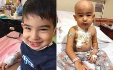 Phát hiện con trai mắc bệnh ung thư máu chỉ từ những triệu chứng ho, sốt thông thường