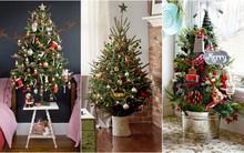 17 ý tưởng trang trí cây thông Noel mini đẹp, độc, lạ dành riêng cho nhà nhỏ