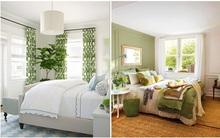 Khi đã chán đen, trắng, xám, hồng thì đừng quên xanh lá cũng là một gam màu rất tuyệt cho phòng ngủ