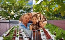 Ông bố trẻ chi 10 triệu trồng rau thủy canh, biến sân thượng thành vườn rau xanh mướt