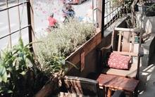 Có một quán cafe trong khu tập thể cũ, khiến ta yêu hơn những ngày Hà Nội thật là thu