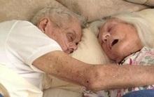 """""""Chờ em, em đến với anh đây"""", người vợ nhẹ nhàng trút hơi thở cuối cùng chỉ vài giờ sau khi chồng mất"""