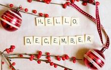 Lời tiên tri chuẩn xác cho 12 cung Hoàng đạo trong tháng 12