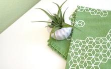 Cách sử dụng màu xanh lá mạ - hot trend của năm nay để trang trí nhà