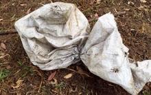 Thấy túi rác bất thường giữa vườn, cô gái mở ra mới phát hiện điều bất ngờ
