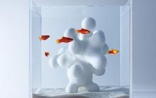 4 mẫu bể cá vừa đẹp, vừa tiện dụng mang lại cảm hứng cho những ai sở hữu
